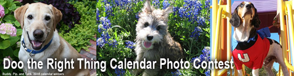 Take the pledge and submit your dog's photo